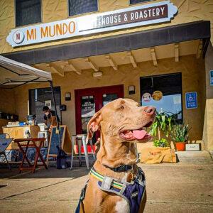 Mi Mundo Coffee Roaster mascot